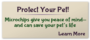 Protect Your Pet! Learn More